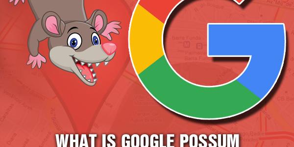 what-is-google-possum-business-platform